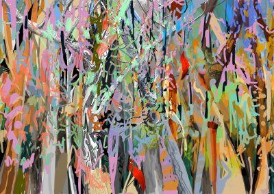 Artworks of the Australian bush